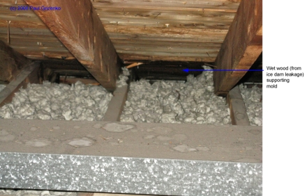 Leakage from ice dam soaking wood along eaves