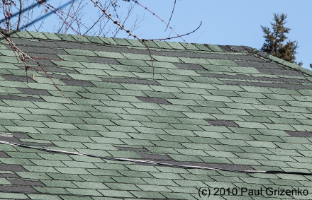 Shingle_Blowoff_MG_8769_v2