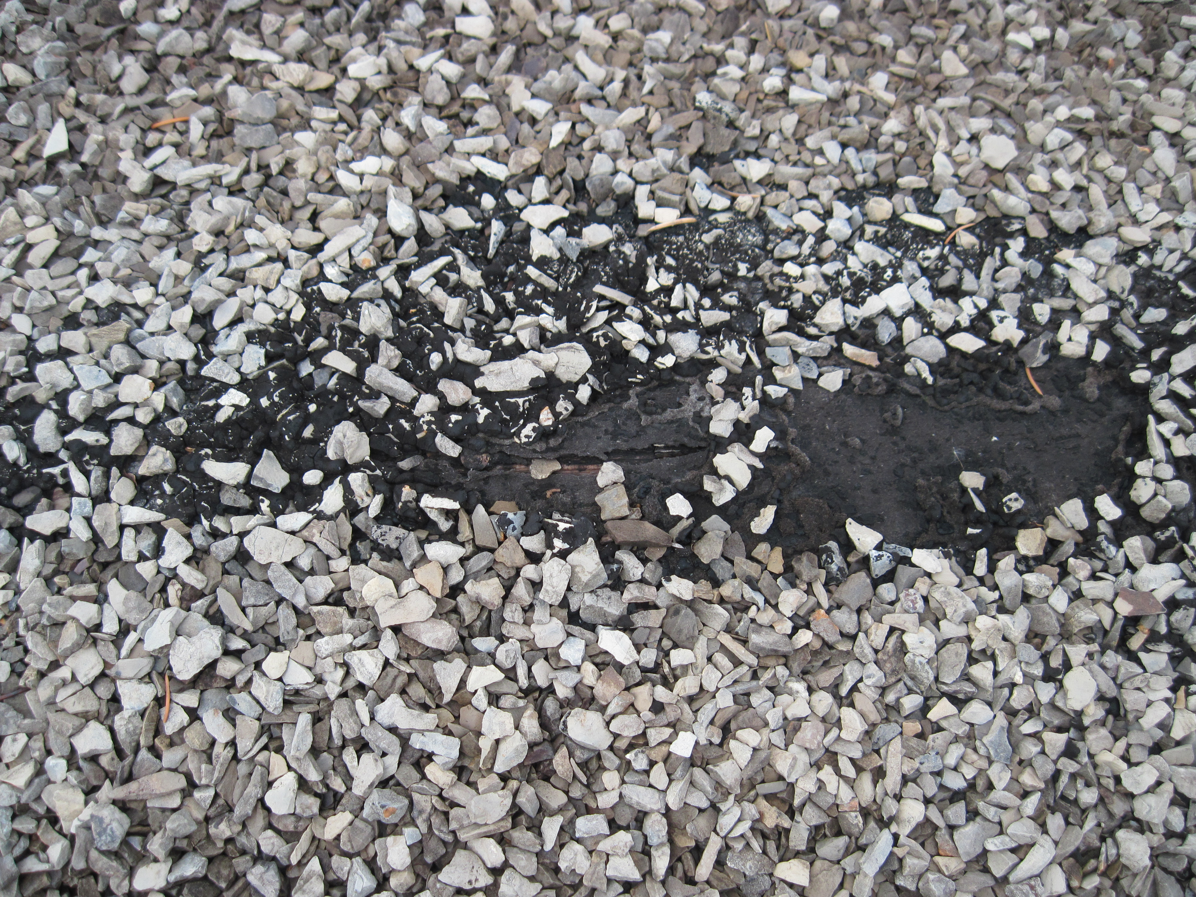 Example Of Bubble In The Tar And Gravel Roof Which Has Risen (which Then  Allowed The Protective Gravel To Move Away), And Cracked Once The Sun Acted  On The ...